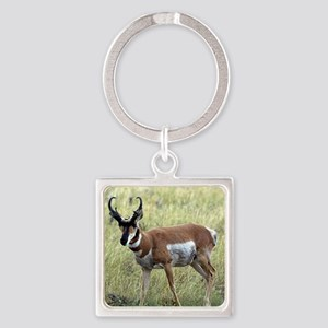 Antelope Square Keychain