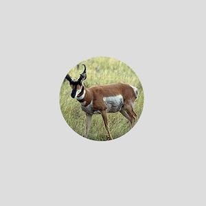 Antelope Mini Button