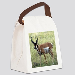 Antelope Canvas Lunch Bag