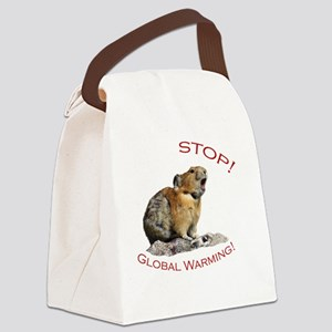 Global Warming Canvas Lunch Bag