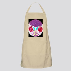 Nose and sinuses, CT scan Apron