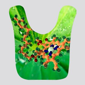 Chlorophyll molecule Bib