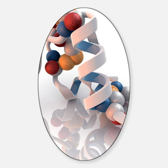 Insulin molecule Sticker (Oval)