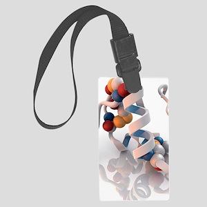 Insulin molecule Large Luggage Tag