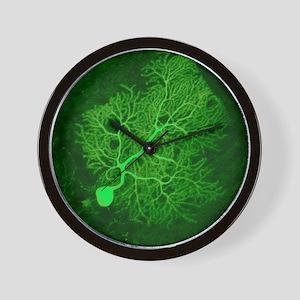 Purkinje nerve cell, light micrograph Wall Clock