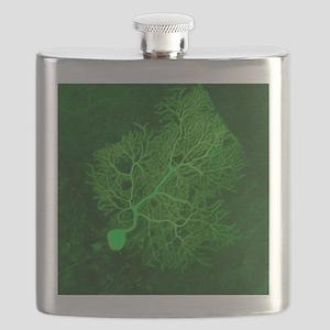 Purkinje nerve cell, light micrograph Flask