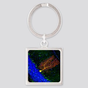 Purkinje nerve cell Square Keychain