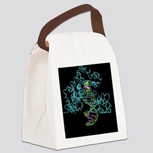 Taq polymerase replicating DNA Canvas Lunch Bag