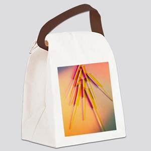 View of several acupuncture needl Canvas Lunch Bag