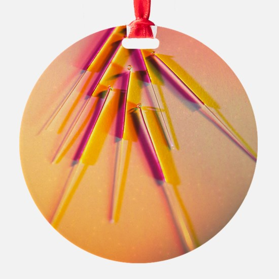 View of several acupuncture needles Ornament