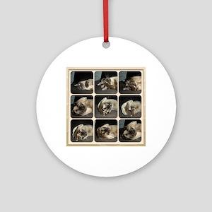 Tonkinese Self Petting Round Ornament