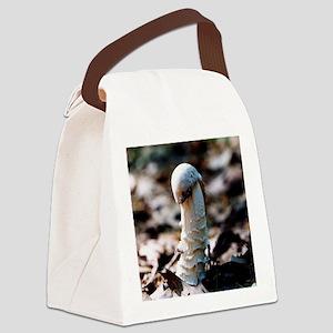 Mushroom King Canvas Lunch Bag