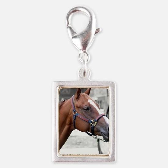 The Show Horse Silver Portrait Charm