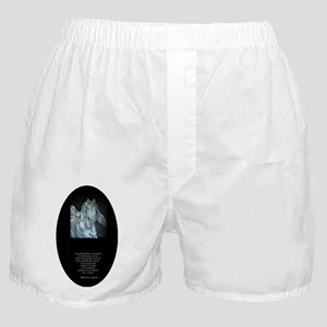 Legend of the Horse Boxer Shorts