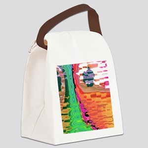 Meddle A TD Canvas Lunch Bag