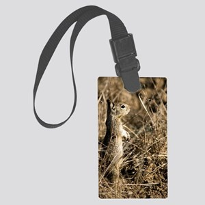9x12 Cute Squirrel Large Luggage Tag