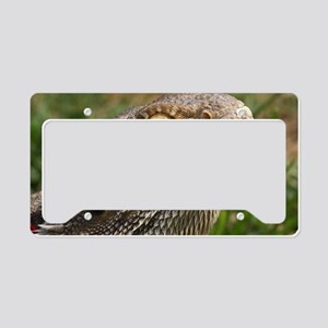 Beautiful Bearded Dragon on G License Plate Holder