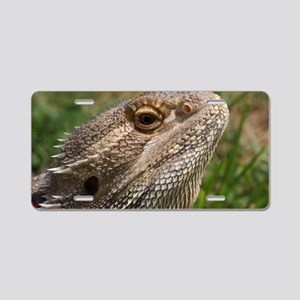 Beautiful Bearded Dragon on Aluminum License Plate