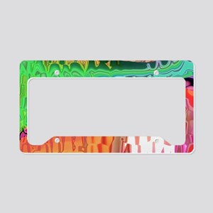 Meddle A PC License Plate Holder