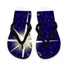 Christmas Star Flip Flops