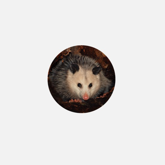 Opossum Mini Button