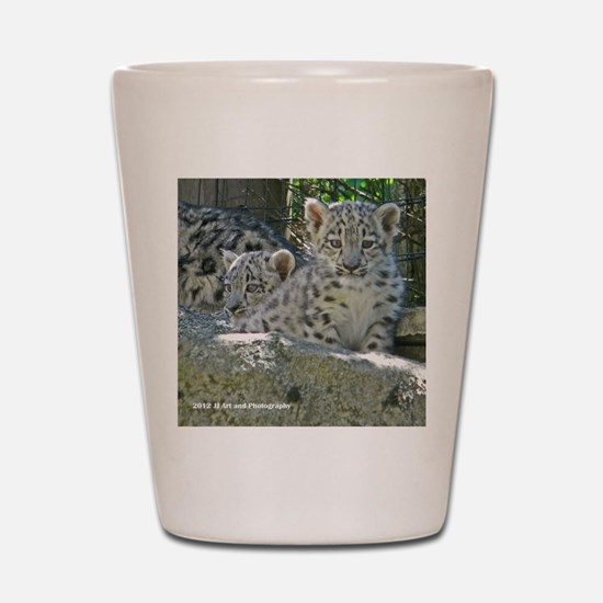 Baby Snow Leopards Shot Glass