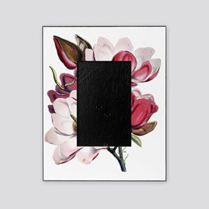 Pink Magnolia Flowers Picture Frame