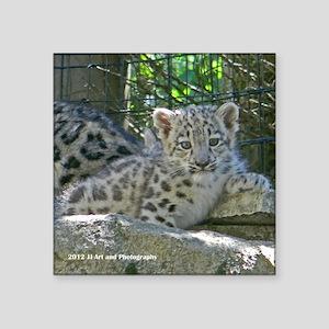 """Snow Leopard Cub Square Sticker 3"""" x 3"""""""