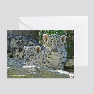 2 baby snow leopards Greeting Card
