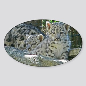 2 baby snow leopards Sticker (Oval)