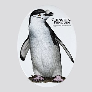 Chinstrap Penguin Oval Ornament