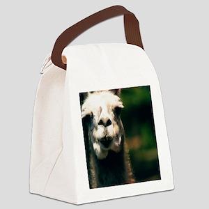 Hi there! Como te llama? Canvas Lunch Bag