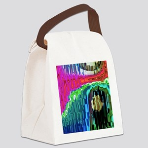Meddle B SC Canvas Lunch Bag