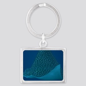 Spotted Eagle Ray 23 x 35 Print Landscape Keychain