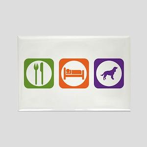 Eat Sleep Spaniel Rectangle Magnet