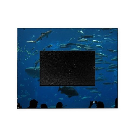 Whale Shark 23 X 35 Print Picture Frame By Admincp20600000