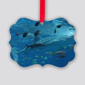 Whale Shark 23 x 35 Print Picture Ornament