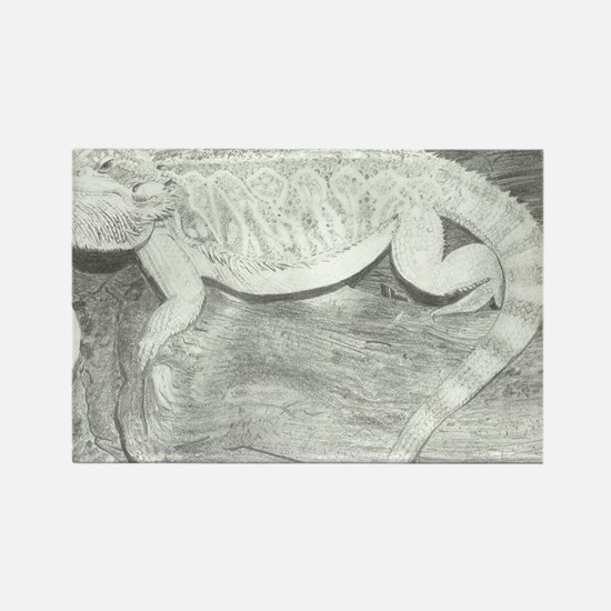 Pencil drawing of a Bearded Drago Rectangle Magnet