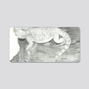 Pencil drawing of a Bearded Aluminum License Plate