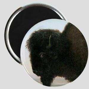Bierstadt Buffalo Magnet