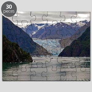 Tracy Arm Glacier Puzzle