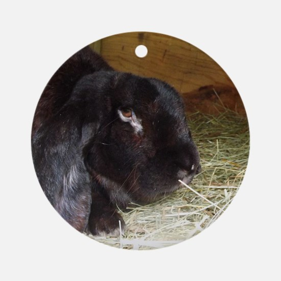 English Lop Round Ornament