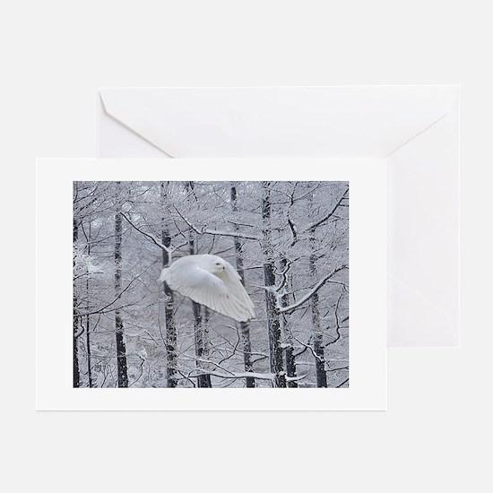 Snowy Owl, Praying Wings Greeting Cards