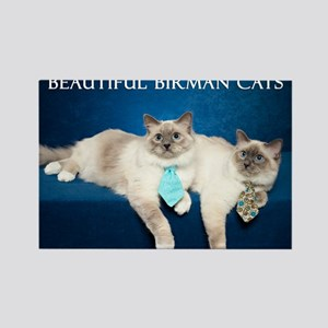 Birman Cat Calendar Rectangle Magnet