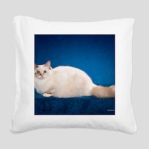 Birman Cat Calendar Square Canvas Pillow