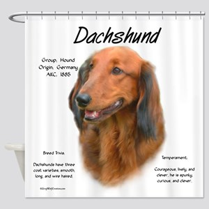 Longhair Dachshund Shower Curtain