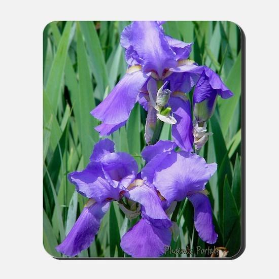 Greeting-card-blue-iris-8 Mousepad