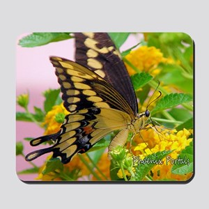 greeting-card---swallowtail-butterfly Mousepad