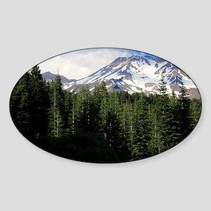 Mount Shasta 16 Sticker (Oval)
