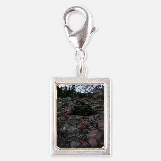 Mount Shasta 62 Silver Portrait Charm